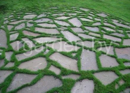 Песчаник серо-зеленый для мощения 5-6см